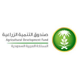 صندوق_التنمية_الزراعية